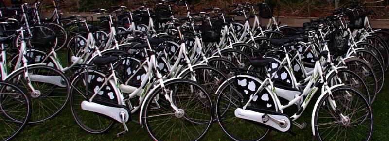 fietsverhuur Langedijk