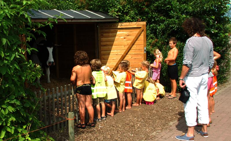 zomervakantie noordzeekust NH kinderen